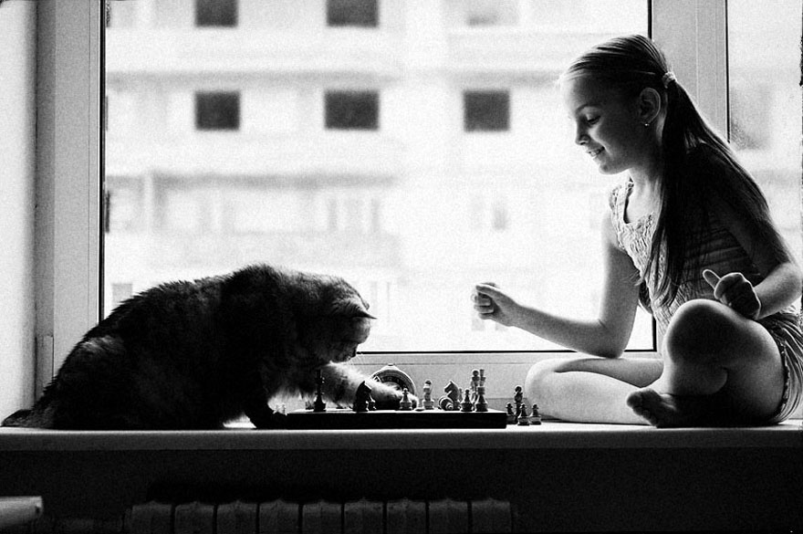children cat playing photography 29 880