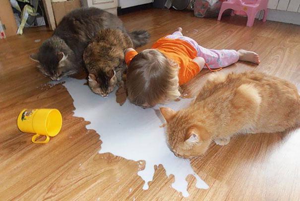 funny kids babysitting pets 4 58f71dec2f53e 605