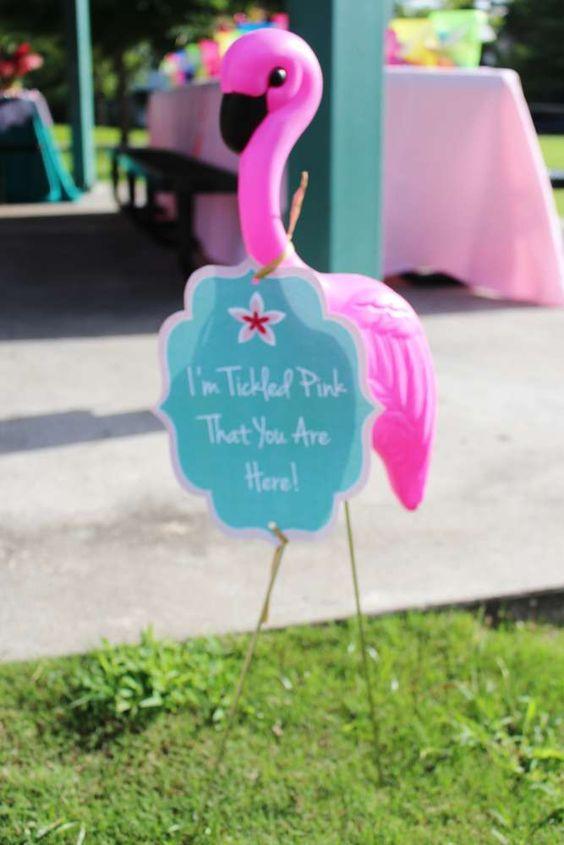 paidiko parti flamingo 8