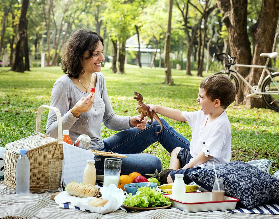 oikogeneiako picnic 3