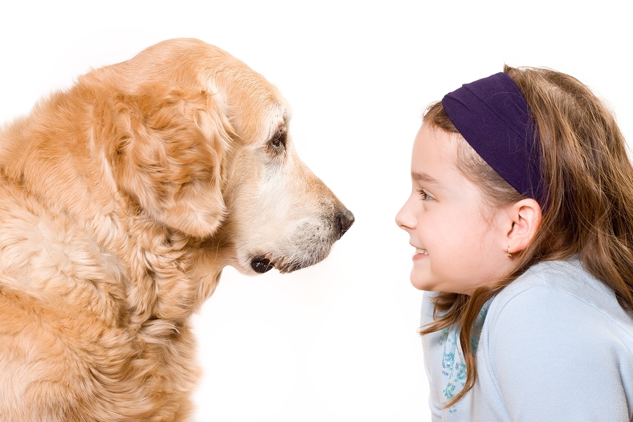 bigstock Cute girl and her dog friend 26478776