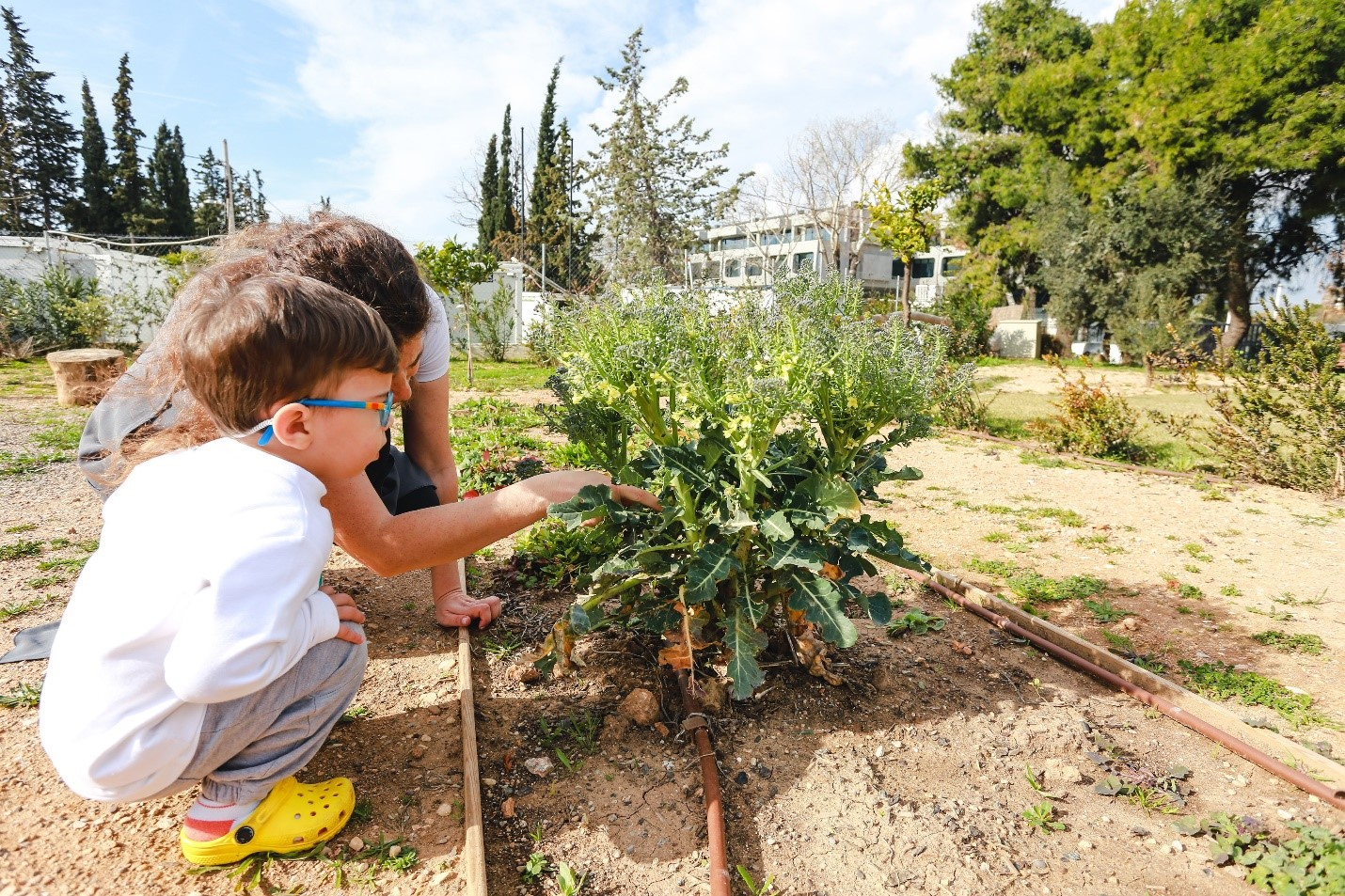 Montessori Community School 2