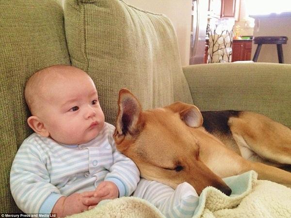Η πιο τρυφερή σχέση που έχετε δει! Το μωρό και ο σκύλος του (εικόνες)