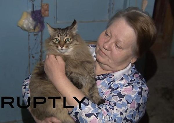Μοναδικό: Γάτα έσωσε εγκαταλελειμμένο μωρό κρατώντας το ζεστό (εικόνες)