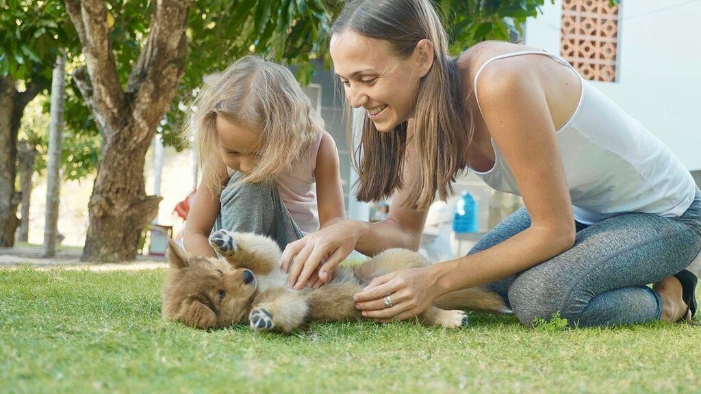 Γιατί μιλάμε μωρουδιακά (baby talk) στα σκυλάκια μας;