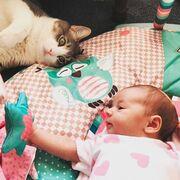 15 φωτογραφίες που αποδεικνύουν ότι οι γάτες είναι το τέλειο κατοικίδιο για μωρά (pics)