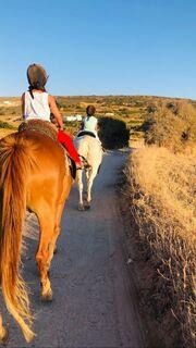 Θέλησαν όμως να δοκιμάσουν και κάτι άλλο. Οπως βόλτα με άλογα.