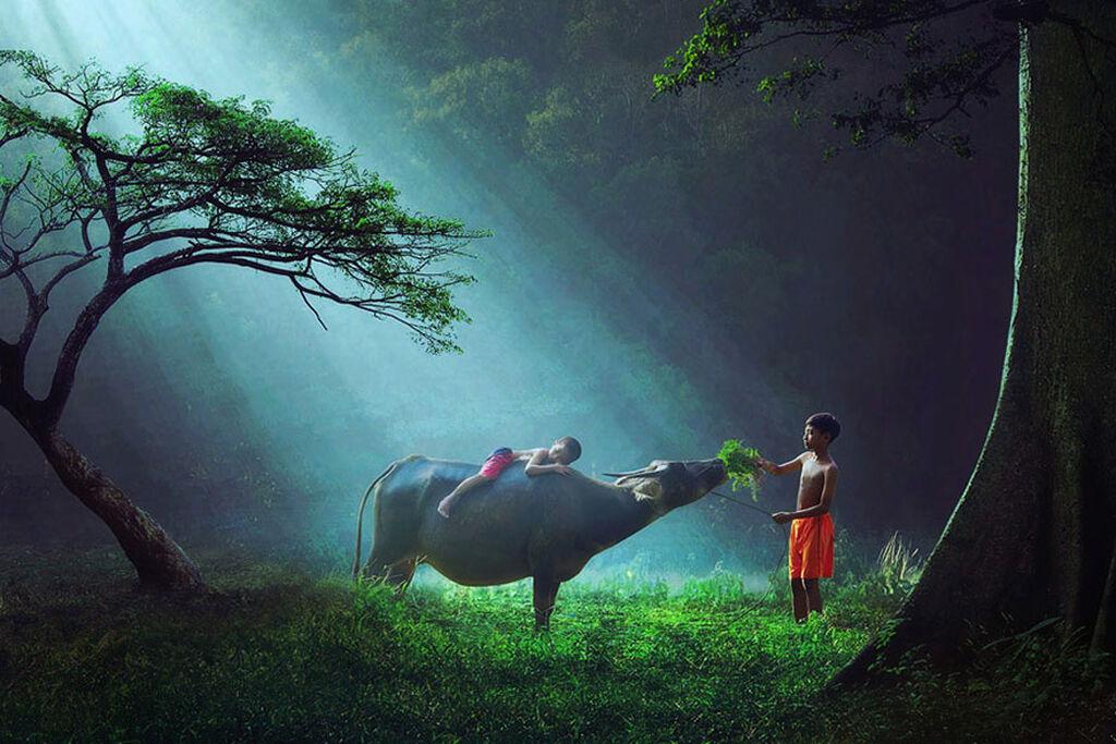 Ινδονησία Image credits: Ipoenk Graphic