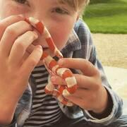 Φίδι για κατοικίδιο απέκτησε ο γιος του γνωστού σεφ (εικόνες)