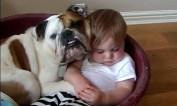 Βίντεο: Σκύλος και μωρό κοιμούνται μαζί!