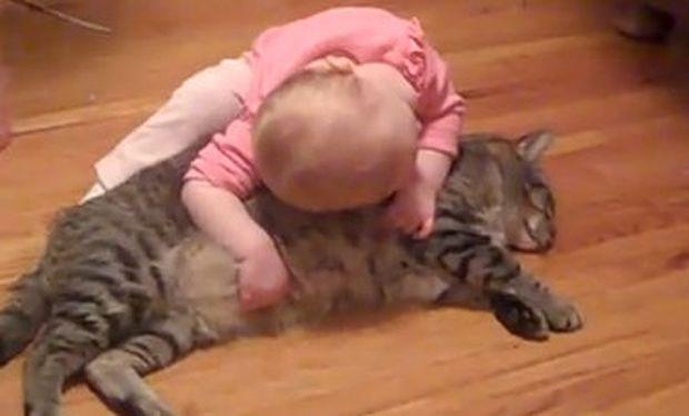 Βίντεο: Η αγάπη ενός μωρού για τον υπομονετικό γάτο του!