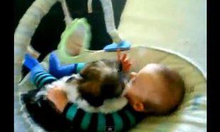 Το κουτάβι λατρεύει το μωρό (βίντεο)