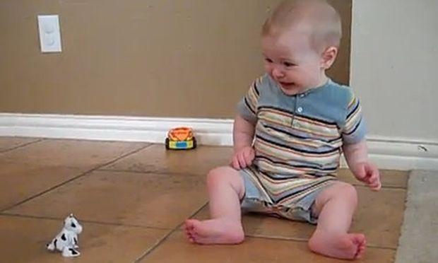 Απίθανο βίντεο: Τον τρομάζει ένα μικροσκοπικό παιχνίδι!