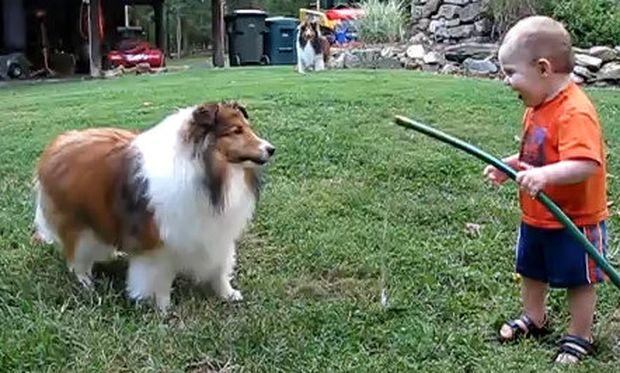 Βίντεο: Το απίστευτο παιχνίδι του μπόμπιρα με τον σκύλο!
