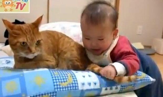 Τι τραβάει αυτή η γάτα!