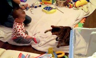 Μωρό Vs γάτας. Ποιός κερδίζει;