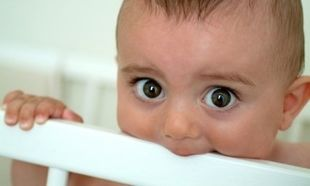 Τι πρέπει να κάνετε αν το παιδί τραυματίσει το δόντι του!