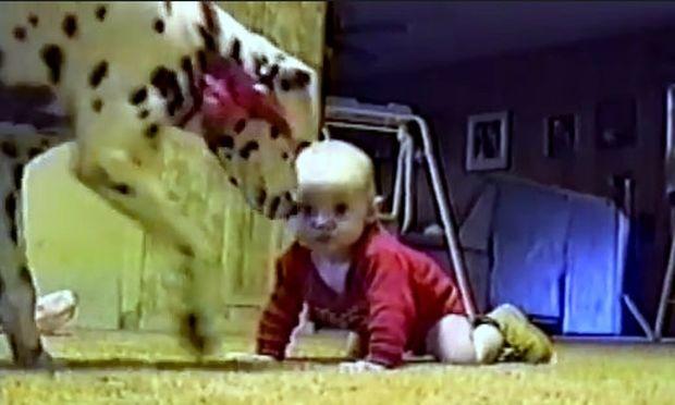 Δεν είναι πάντα εύκολη η συμβίωση ενός μωρού με σκύλο! (βίντεο)