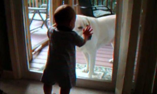 Ο σκύλος γαβγίζει και το μωρό… σαστίζει! (βίντεο)