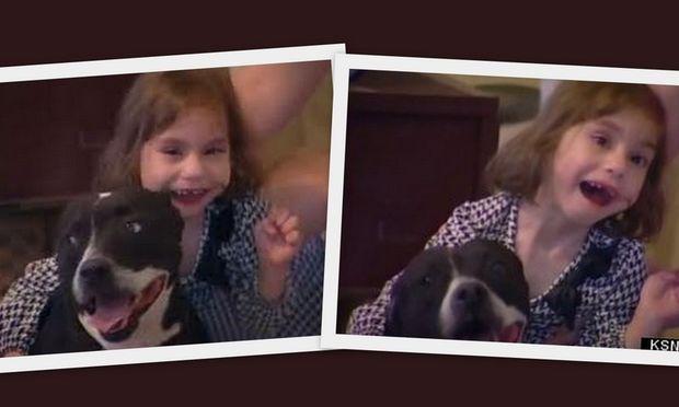 Εκλεψαν από τυφλό κοριτσάκι το σκυλάκι του, φίλο και οδηγό του! Εκκληση απευθύνουν οι γονείς (βίντεο)