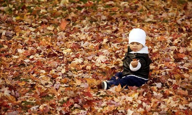 Πώς να βγάλετε καλλιτεχνικές φωτογραφίες των παιδιών σας σε φθινοπωρινό φόντο!