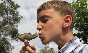 Η σπάνια φιλία ενός 12χρονου αγοριού με ένα σπουργίτι! (φωτογραφίες)