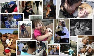 Ολοι χρειάζονται μία αγκαλίτσα (φωτογραφίες)