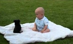 Δείτε τι γίνεται όταν ένα μωρό βρεθεί με ένα κουταβάκι! (βίντεο)