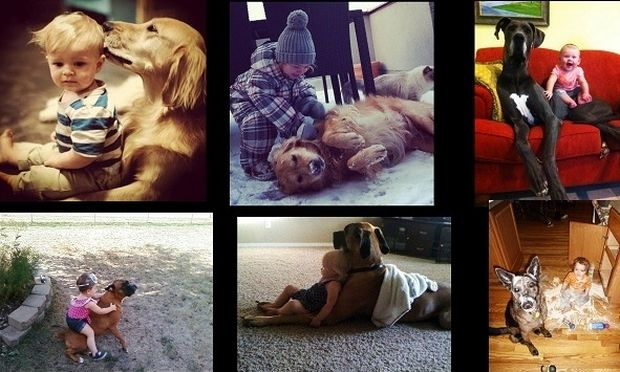 Μία σχέση αγάπης! Δείτε τι κάνουν τα σκυλιά για τους λιλιπούτειους φίλους τους! (εικόνες)