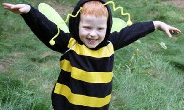 Φτιάχνουμε εύκολα και οικονομικά αποκριάτικη στολή μελισσούλας!