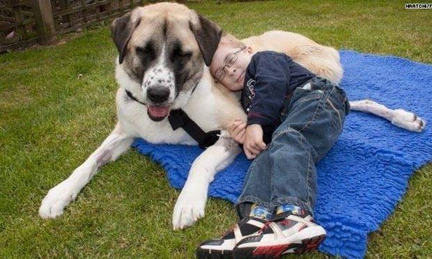 Οουεν και Χάτσι: Μια ξεχωριστή φιλία ανάμεσα σ' ένα αγόρι με σπάνιο σύνδρομο και έναν σκύλο (βίντεο)