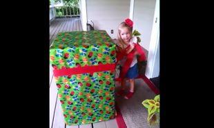 Μπορείτε να φανταστείτε τι δώρο περιέχει το μεγάλο κουτί για το κοριτσάκι; (βίντεο)