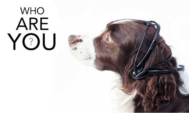 Τέλος στο γάβγισμα! Αυτή η συσκευή μεταφράζει τις σκέψεις του σκύλου σας  (βίντεο)
