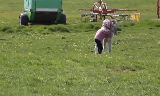 Η ασυνήθιστη φιλία μεταξύ ενός μικρού κοριτσιού και ενός ορφανού πόνι (βίντεο)