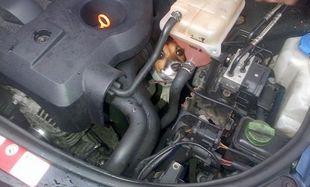 Κουταβάκι παγιδεύτηκε σε μηχανή αυτοκινήτου εν κινήσει! (εικόνες)
