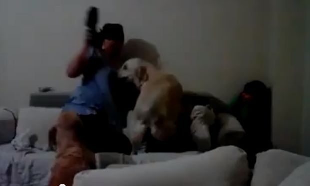 Οι καλύτεροι προστάτες! Σκυλιά ορμούν σε μαμά που ετοιμάζεται να χτυπήσει το παιδί της (βίντεο)