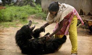 Αυτή η αρκουδίτσα ζει με μία οικογένεια κι αγαπάει πολύ τα παιδιά! (εικόνες)
