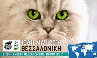 Τι κάνει «νιάου-νιάου» στις 10 και 11 Μαΐου στη Θεσσαλονίκη;