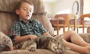Το αγοράκι που έσωσε η γάτα από δάγκωμα σκύλου, μιλά για την τετράποδη «ηρωίδα» του!