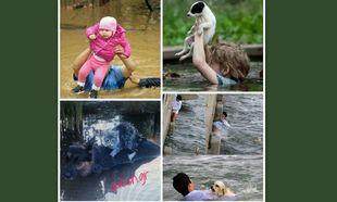 SOS 4 SERBIA !!! PLEASE HELP !!! SOS !!!