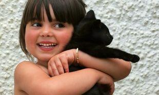 Ημέρα Αγκαλιάς Γάτας η σημερινή! Eμπρός λοιπόν! Αγκαλιάστε τα γατιά σας! (βίντεο)