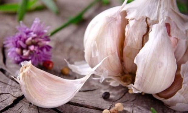 Διώξτε τα έντομα με φυσικό εντομοκτόνο στο πι και φι!