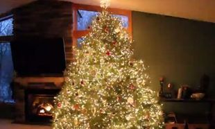 Αυτό το χριστουγεννιάτικο δέντρο θα σας φτιάξει τη διάθεση. Δείτε γιατί! (βίντεο)