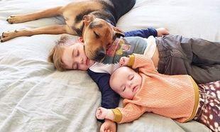 Το αγόρι που έγινε γνωστό επειδή κοιμόταν με το σκύλο του, έχει νέα παρέα στο κρεβάτι!