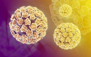 Πώς μεταδίδεται ο ιός HPV!