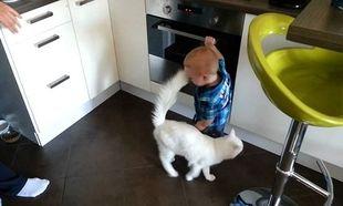 Τι άλλο θα δούμε: Παιδάκι παίζει με το φούρνο μπροστά στους γονείς του κι η γάτα το προστατεύει (βίντεο)