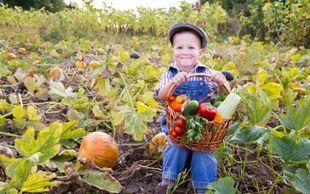 Πώς θα μάθετε το παιδί σας να τρώει λαχανικά!