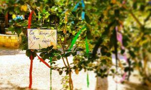 Kinderland: H αληθινή παιδική κατασκήνωση, στον Κάλαμο Αττικής
