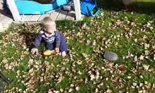 Αγώνας δρόμου για πολλά γέλια! Αυτό το μωράκι τρέχει να ξεφύγει από...(βίντεο)