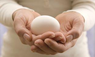 Δωρεά ωαρίων: Όλα όσα πρέπει να γνωρίζετε! (βίντεο)